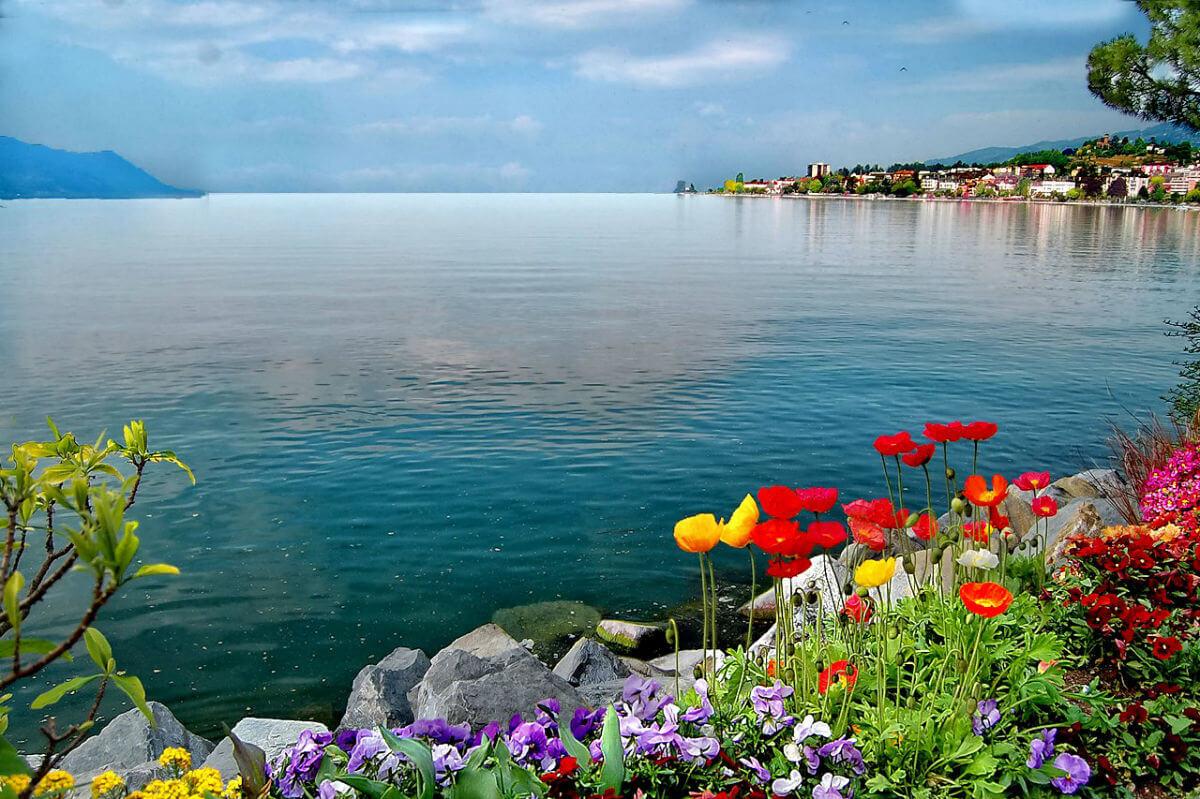 Фото в цветах на море