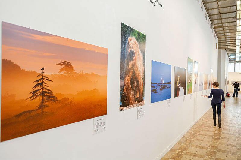 Выставка фотографий в Москве