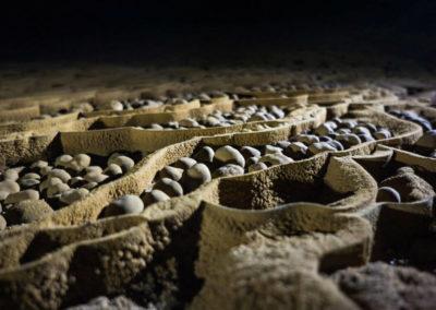 Пещерный жемчуг Шондонга