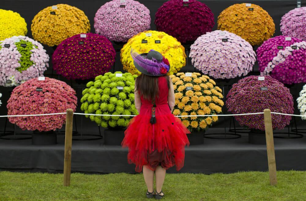 Цветочный фестиваль в Москве