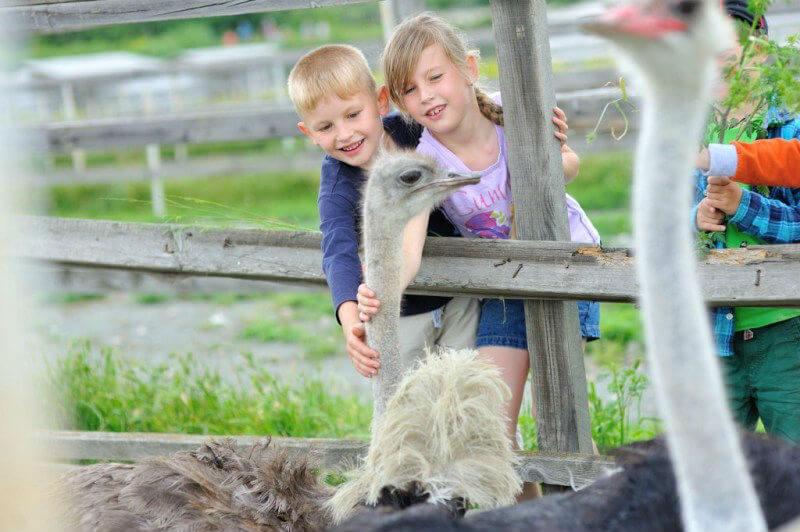 Экскурсии для детей в Крыму недопустимы