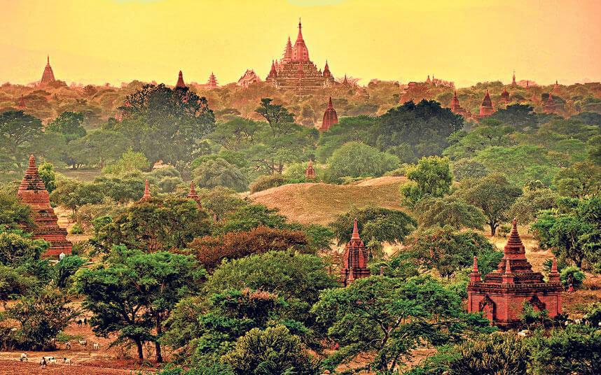 Лихорадка Денге в Мьянме