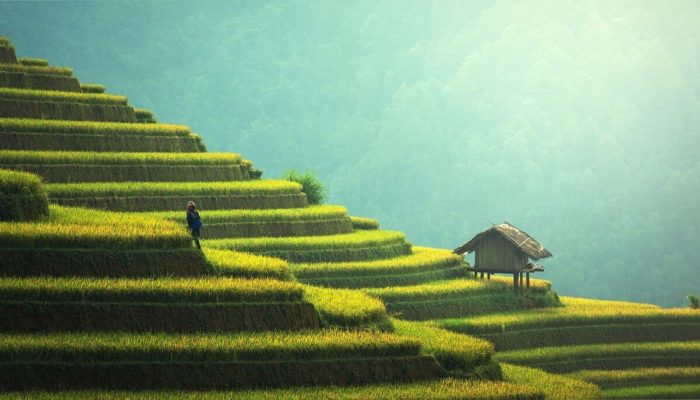 Райская сказка – Бали