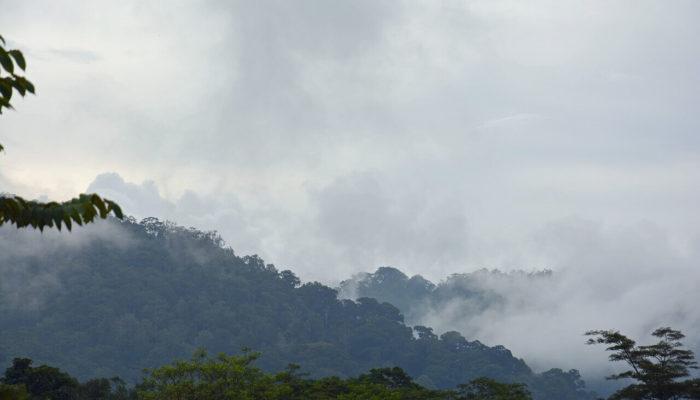 Топ-6 мест на острове Суматра
