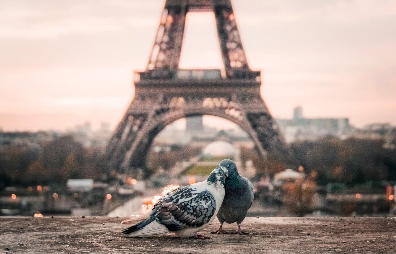 Париж - романтичный город