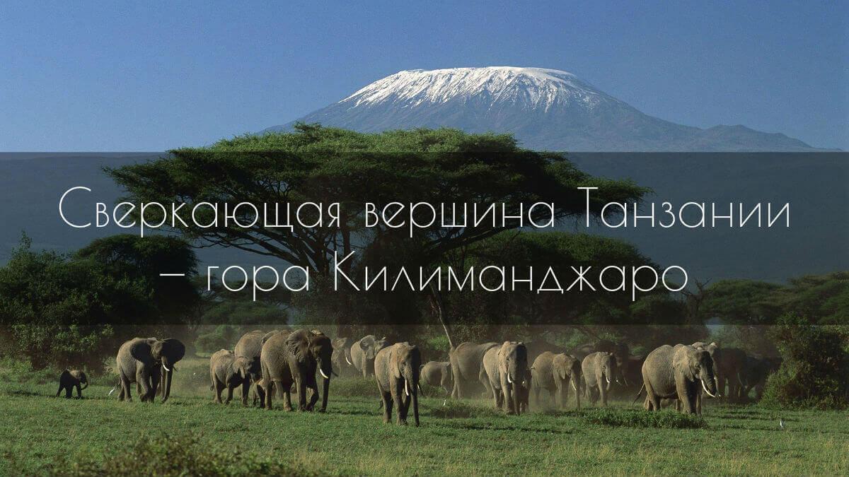 Гора Килиманджаро — «корона» Танзании