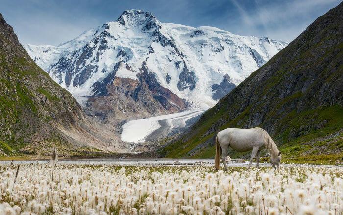 Теперь для поездки туристов в Киргизию нужна регистрация
