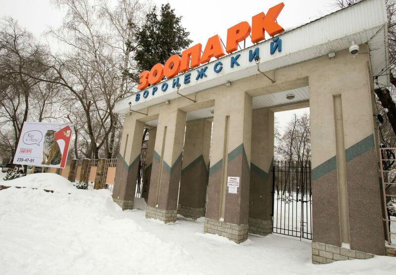 Зоопарк в Воронеже вновь открылся