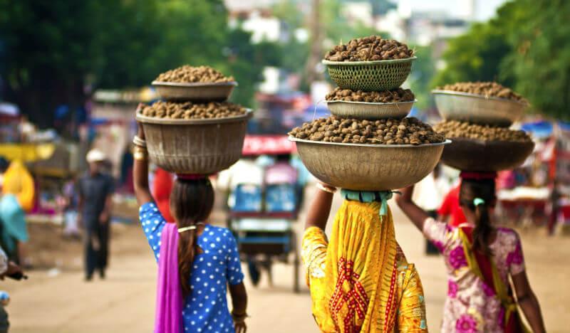 Поддельные визы в Индию