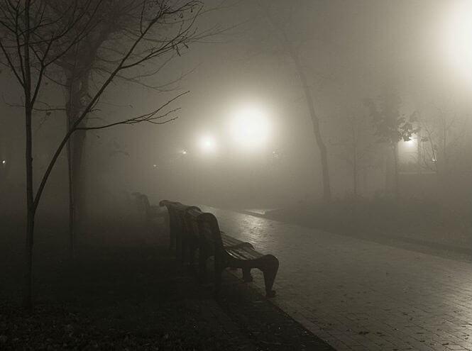 Париж открыл парки для ночных прогулок