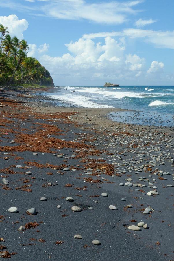 Пляж в Доминике. Фото S. Faric