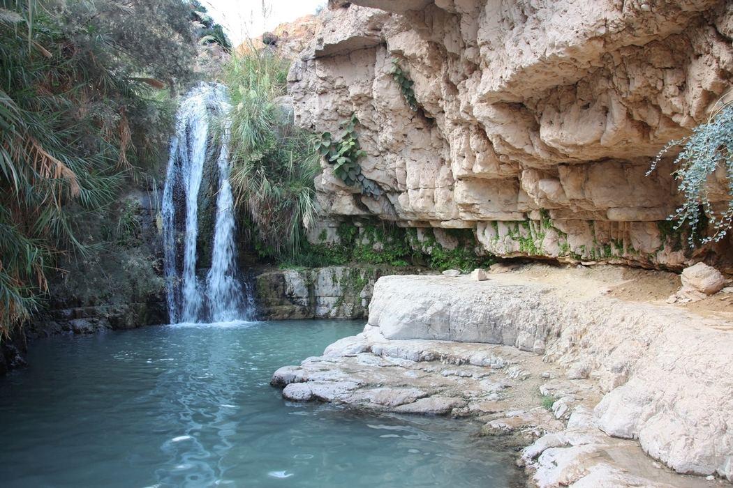 Оазис Эйн-Геди, Израиль