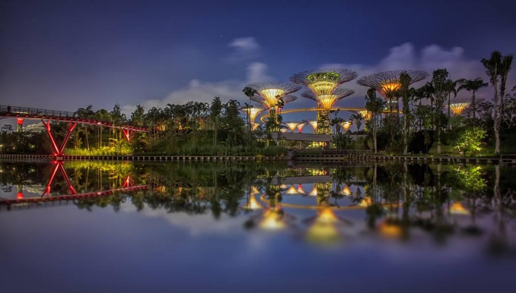 Зеленый суперсад, Сингапур