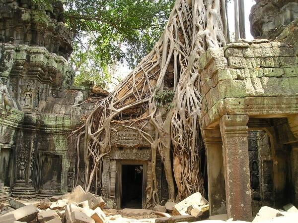 Смерть туристов в Камбодже