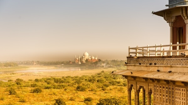 В Индии открылись королевские сады