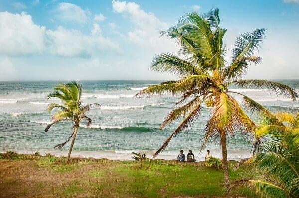 Лихорадка Денге пришла на Шри-Ланку