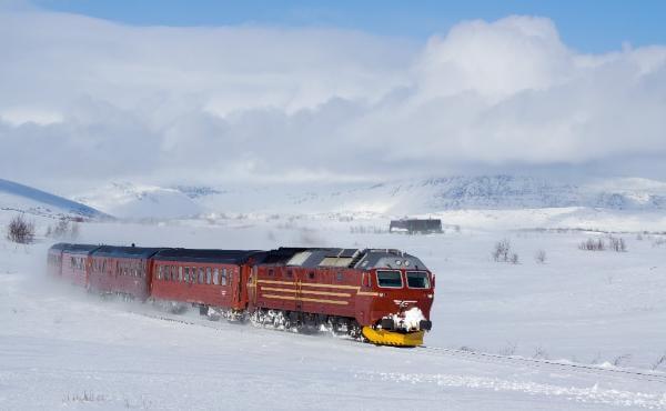 В северное путешествие из Санкт-Петербурга скоро отправится поезд