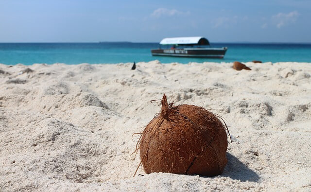 Фестиваль кокосов в Доминикане