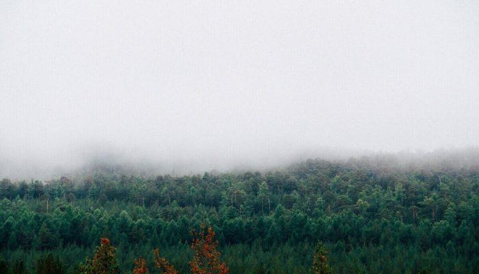 Топ-5 удивительных мест прекрасной Ялты