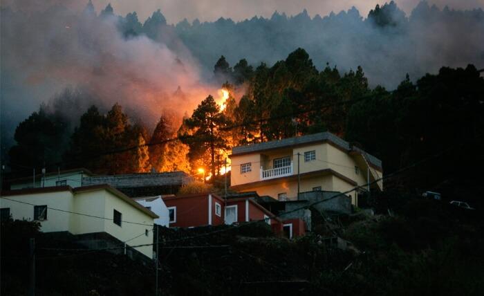 Лесные пожары на Канарах