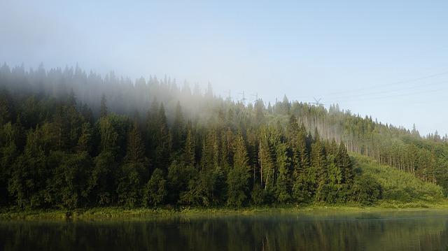 В России больше не горят Национальные парки