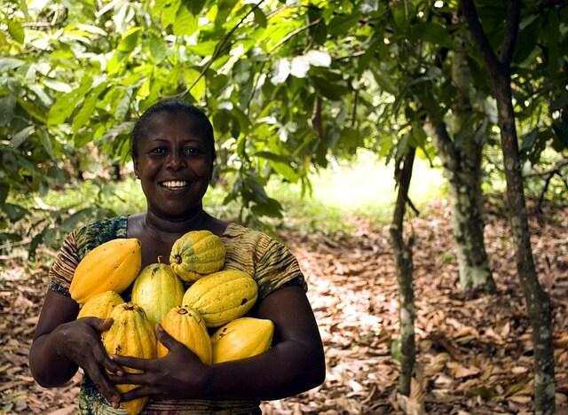 Гана вводит электронные визы