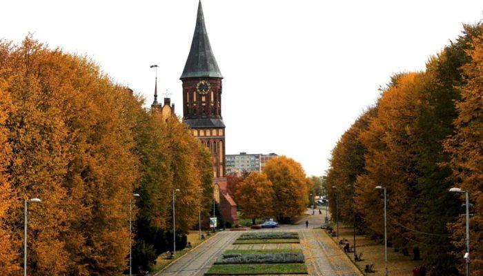Самые интересные экскурсии в Калининграде в 2020 году