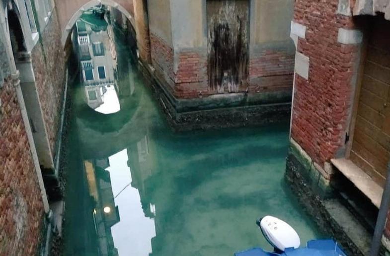 Вода в Венеции стала чище