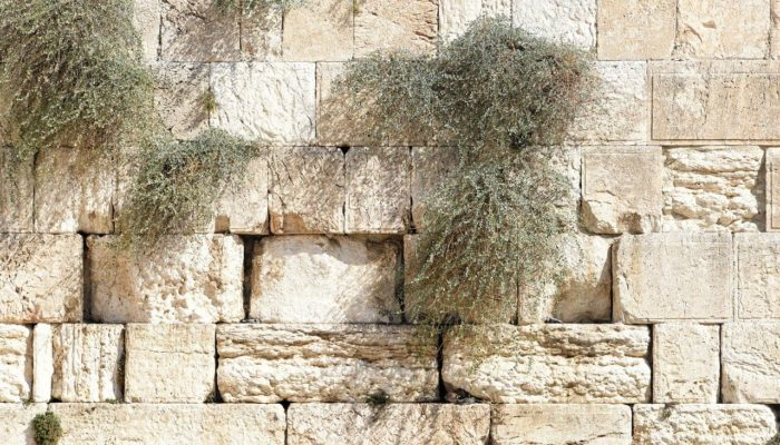Израильтяне продезинфицировали Стену Плача