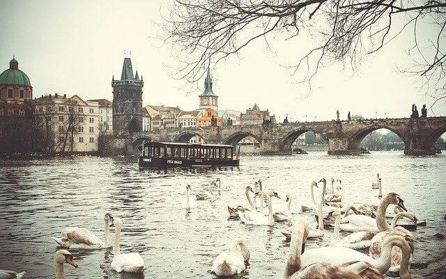 Чехия и Австрия планируют поэтапно снимать ограничения