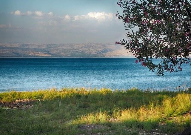 Природа Израиль