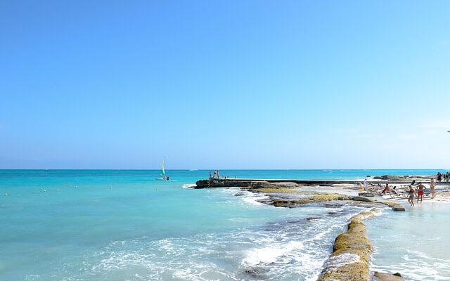 Еще не открывшиеся мексиканские пляжи завалило водорослями