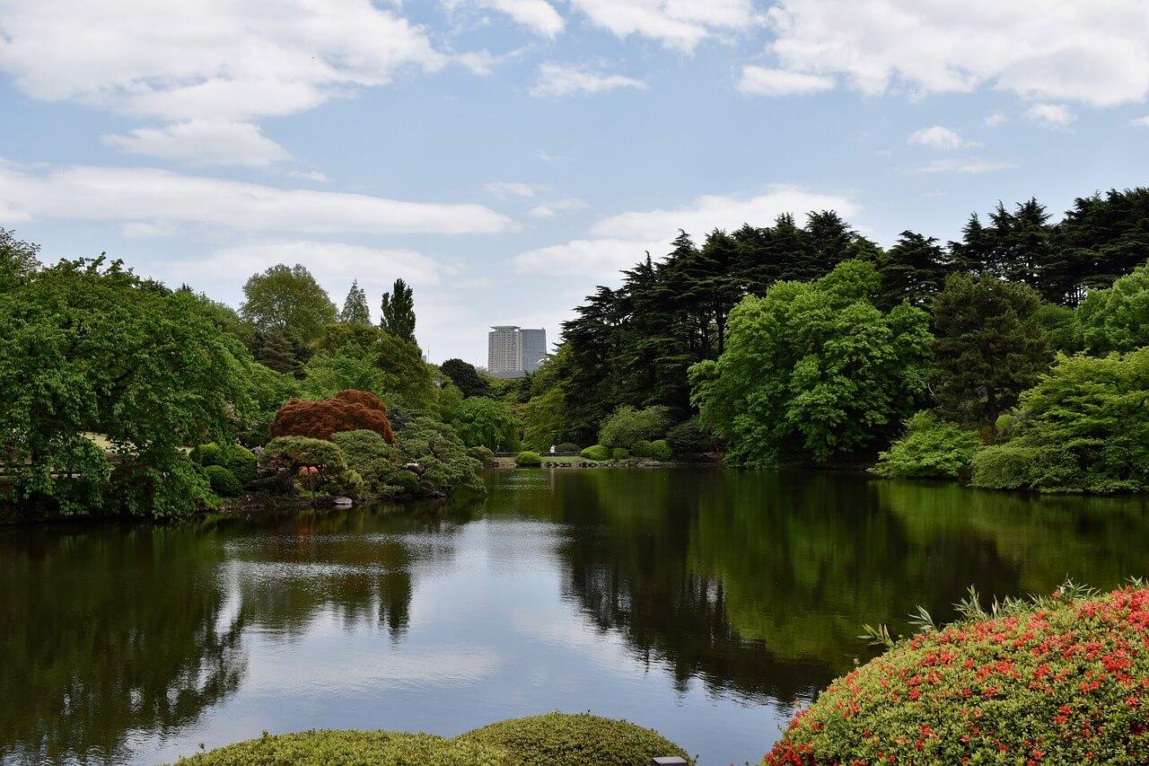 Токио парк