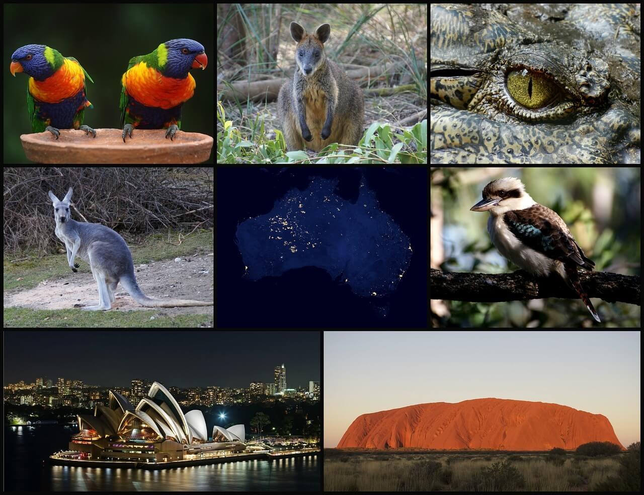 Австралия коллаж фото
