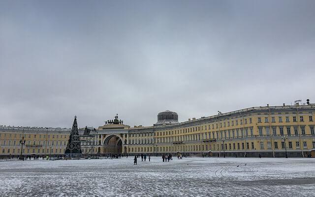 Впервые за несколько лет на Дворцовой площади установят живую ель
