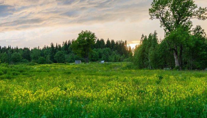 Третья программа кэшбека на путешествия по России продлена до конца года