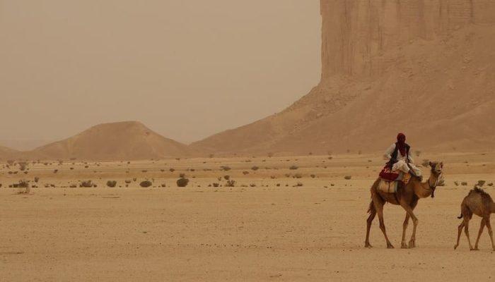 Саудовская Аравия отправит на карантин туристов, не прошедших вакцинацию