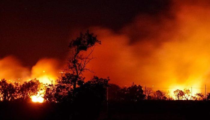 В близи курортов Турции бушует сильнейший лестной пожар