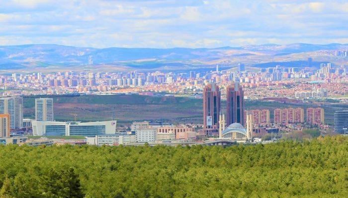 В Турции взяты под контроль практически все очаги лесных пожаров