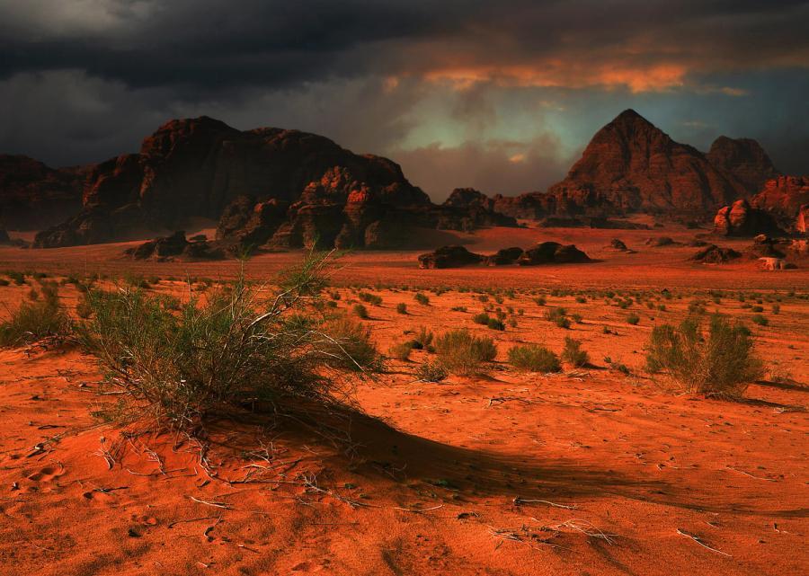 Отдых в Египте: пустыня Синай