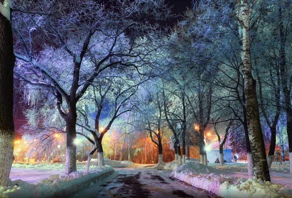 Городской парк в Вологде