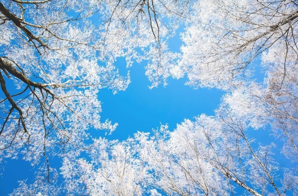 Ослепительно синее зимнее небо