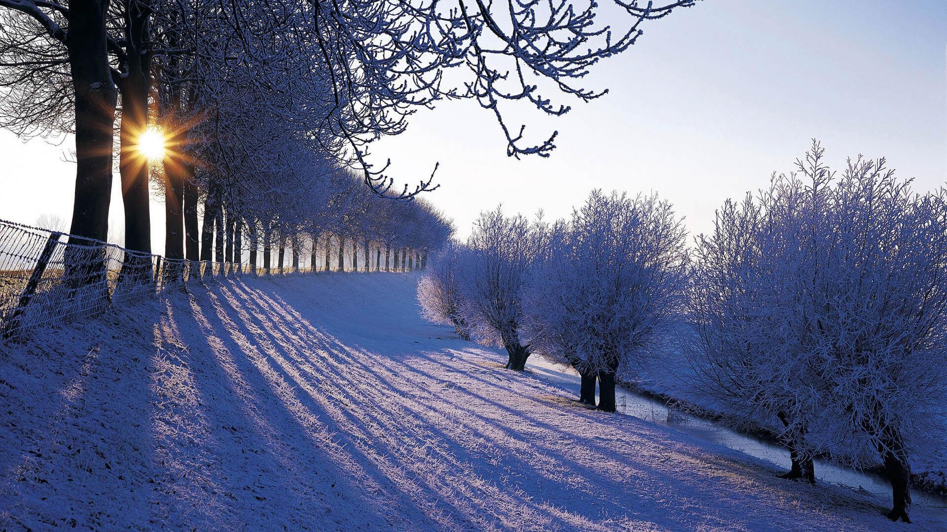 Прекрасная зимняя страна чудес