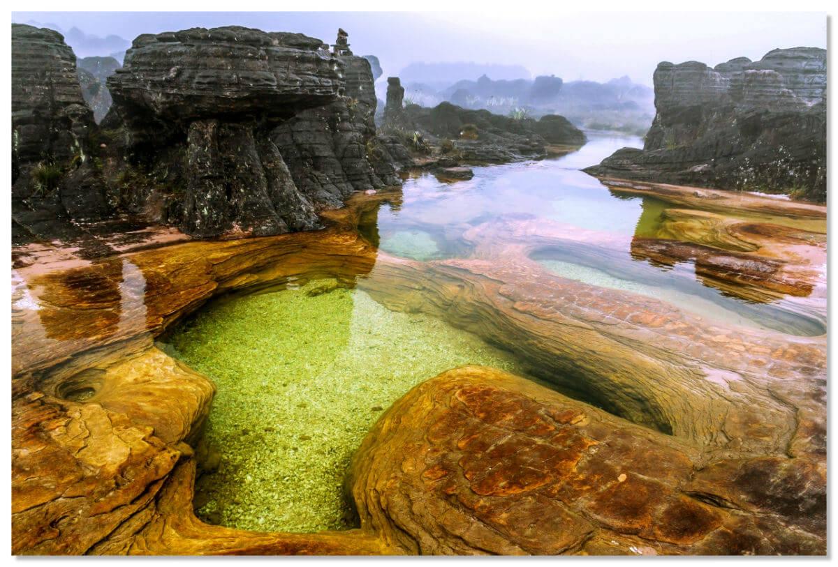 Самыми красочными уголками плато являются торфяные болота – там произрастают прекрасные цветы