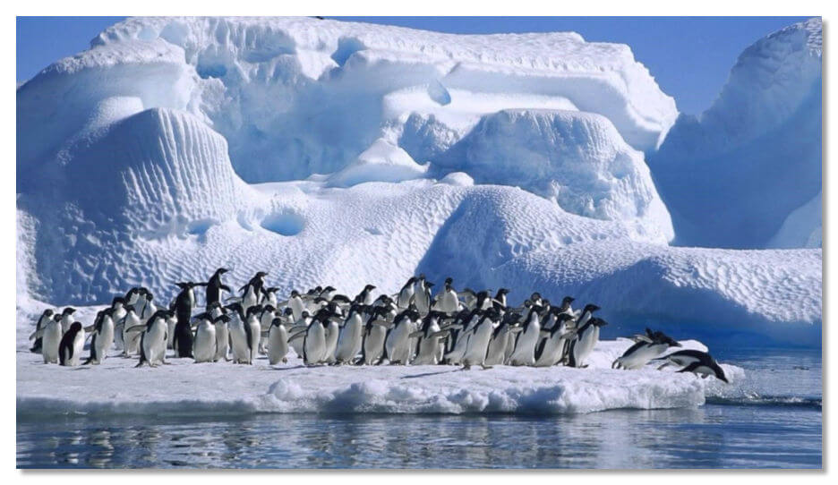 Terra Australis Incognita — современная Антарктида