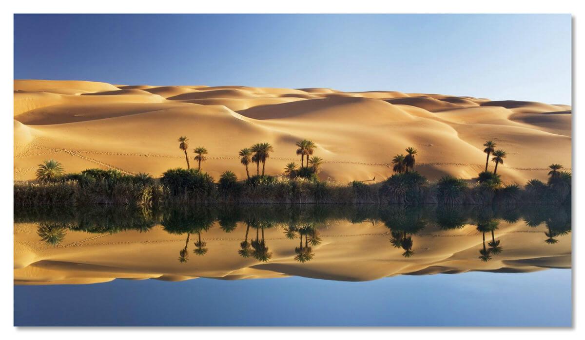 Ливийский оазис