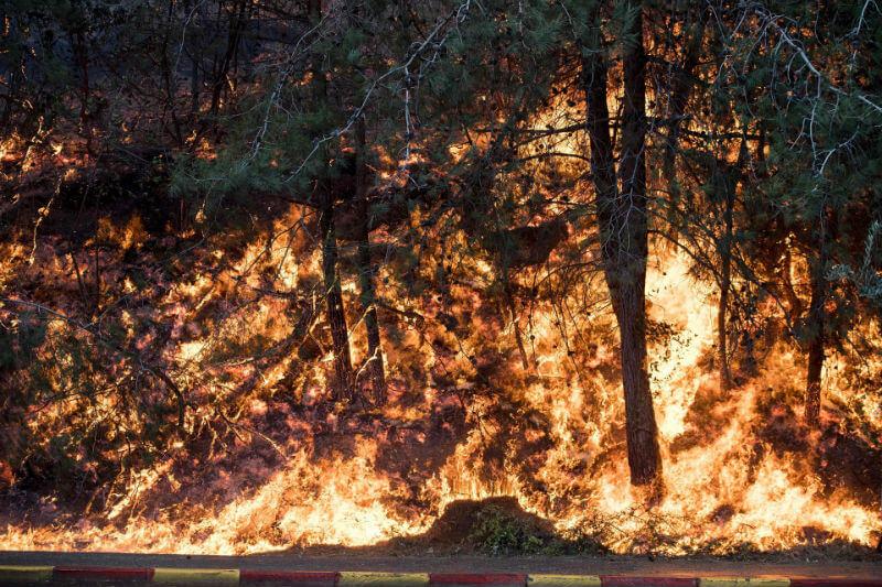 Пожары в Израиле
