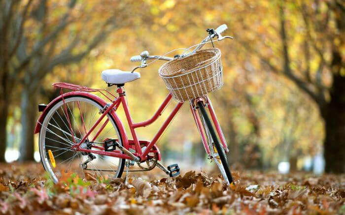 Велосипеды запрещены в Венеции