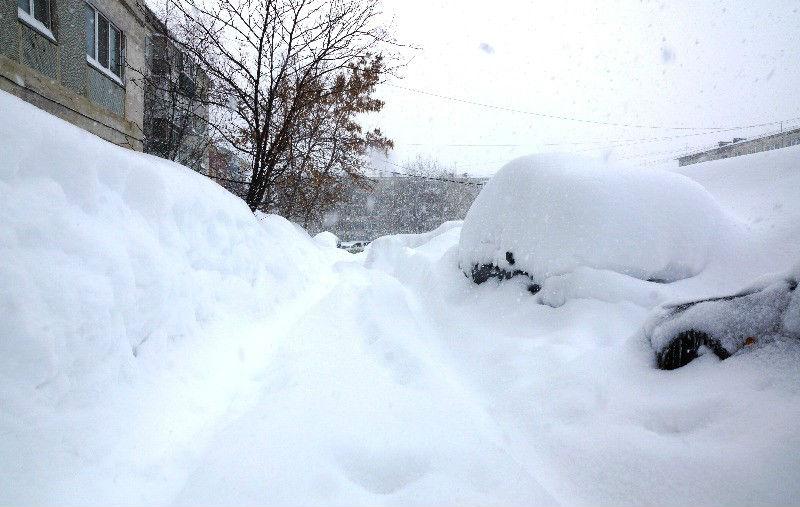 День снега на Сахалине
