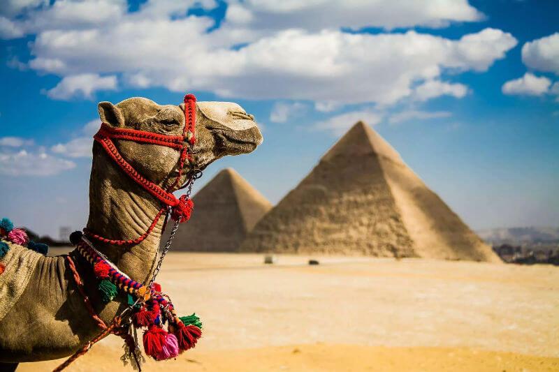 Возвращение туристов в Египет пока под вопросом